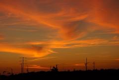 Ripon Sunset (Alvin Harp) Tags: california sunset orange nature silhouette september powerlines 2012 ripon nex wispyclouds naturepix naturesbeauty nex5n sonynex5n alvinharp