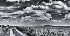 on my way.. (polfotos) Tags: landschaft landscape sky himmel wolken mecklenburgvorpommern zarenthin pentax way weg
