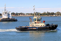 """Svitzer Meringa"" tug - Newcastle (Jungle Jack Images) Tags: tug boat barge tender heave pull push guide port harbour dock starboard stern bow rope team ship liner cargo bulk carrier vessel craft cruise berth mooring anchorage moor wharf quay marina waterfront pilot pier docker stevedore captain crew handle transport ore power grunt diesel engine draft beam length newcastle hunter region river svitzer meringa murray pb towage pacific basin"