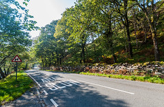 On the A498 Highway along the shores of Llyn Dinas in Snowdonia National Park - Beddgelert, Gwynedd, Wales, UK (Paul Diming) Tags: pauldiming unitedkingdom beddgelert landscape dailyphoto snowdonianationalpark parks greatbritain park a498 northernwales d5000 wales uk gwynedd gb