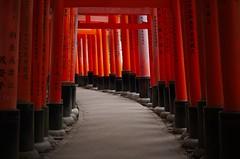 Tunnel of Spirits (Pixel Bucket) Tags: spiritual asien japan kansai journey kyoto religious reise walk asia travel tunnel fushimiinaritaisha urlaub holiday holy shrine trip vacation