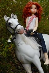 A Ride in the Meadow (Emily1957) Tags: gracie kayewiggs dolls doll toys toy toyhorse battat whitehorse bjd light naturallight nikond40 nikon kitlens