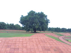 matrimandir_gdns_7079 (Manohar_Auroville) Tags: auroville matrimandir gardens beauty paradise spirituality india tamil nadu manohar luigi fedele