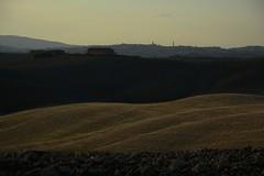 Looking at Siena (Antonio Cinotti ) Tags: landscape paesaggio toscana tuscany italy italia siena hills colline campagnatoscana cretesenesi asciano nikond7100 nikon d7100 rollinghills nikon1685