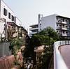 山手ハイツ (yasu19_67) Tags: kowasix kowa kodak ektar100 film filmism filmphotography analog 120 6×6 mediumformat atmosphere photooftheday osaka japan 85mm