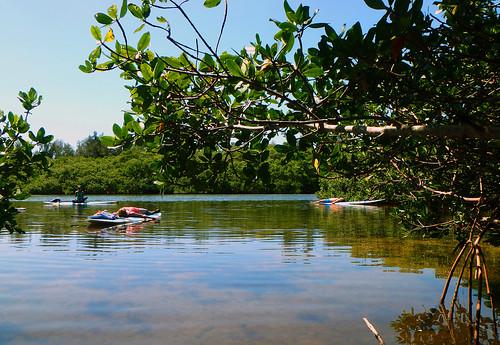 5-1-15-Paddleboard-Yoga-Teacher-Training-Sarasota-FL 37