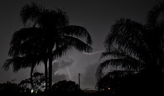 (mblaeck) Tags: trees light sky silhouette night clouds grey lightning sutherlandshire
