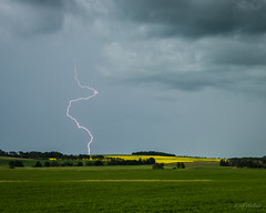 Lightning in Lacombe County (WherezJeff) Tags: ca summer canada alberta fields thunderstorm lightning clive canola