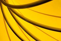 Umbrella Ribs (Mustang Joe) Tags: cruise italy costa yellow umbrella nikon mediterranean it ribs d750 eastern venezia publicdomain veneto 2016