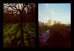 2016-04--05 - Olympus Pen EE - Kodak Ektar 100-02 (sarajoelsson) Tags: city urban color film analog pen spring diptych sweden stockholm snapshot olympus ishootfilm analogue halfframe everydaylife filmgrain vardag 2016 filmphotography penee filmisnotdead halvformat diptyk teamframkallning digitizedwithdslr