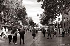 012807 - Barcelona (M.Peinado) Tags: monocromtico blancoynegro byn blackandwhite bw larambla lasramblas lesrambles barcelona provinciadebarcelona catalua espaa spain 17062016 juniode2016 2016 canoneos60d canon copyright