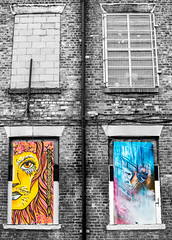 lion and drama 4 windows contrasts (PDKImages) Tags: urban streetart art mill abandoned beauty lady contrast manchester graffiti eyes colours anger lips fortune hidden angry drama fortuneteller unexpected teller liom