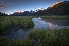 Engadine Meadows {Explored} (Darren Umbsaar) Tags: mountains mountain mount engadine lodge meadow grass grassland marsh marshland swamp meander river creek stream water flow sunrise sun sunny light morning dawn day rockies canada canadian rocky kananaskis alberta birdied smuts commonwealth peak reflection park