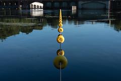 Yellow path (albi_tai) Tags: reflection water yellow river reflex ticino nikon path blu fiume giallo d750 acqua riflessi luce linea diga percorso 21100 sommalombardo fiumeazzurro panperduto albitai nikond750