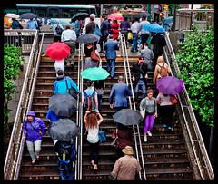 NYC 2016 X100S B 061 (Street X Shooter) Tags: street city newyorkcity urban color rain umbrella candid streetphotography commuter fujifilmx100s