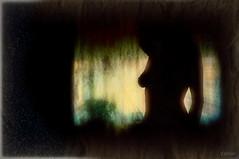 Fantasmas del pasado (Franco DAlbao) Tags: francodalbao dalbao rollei recuerdo memory fantasmas ghosts mujer woman composicin composition textura texture contraluz backlight estrela amor love tristeza sadness silueta slilhouette ventana window 1993 diapositiva slide 35mm