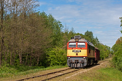 Binarietto (Antonio Martinetti) Tags: balaton branch bahn bhnye vasut vonat vlak mav merci ferrovie ferrocarriles freighttrain freight ferrovia secondaria sergej sidings secondary somogyszob