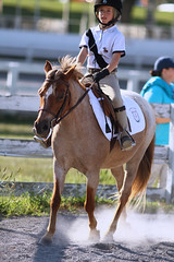 IMG_2540 (SJH Foto) Tags: horse show rider action shot dressage wtc walk trot canter teens teenagers girls