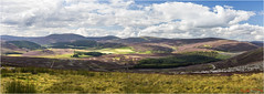 Towards the Lecht (Cairngorms) (The Terry Eve Archive) Tags: terryevephotography joiner cairngorms lechtskicentre moor heath heather hills mountains pano ngc professionalphotography
