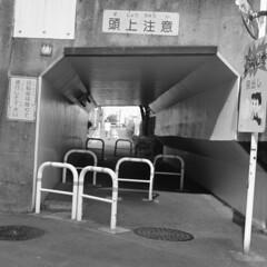 160703_ZenzaBronicaS2_003 (Matsui Hiroyuki) Tags: zenzabronicas2 nikonnikkorp75mmf28 fujifilmneopan100acros epsongtx8203200dpi