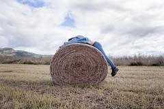 J269/365 - Petit somme en cours de route (clementine.gras) Tags: 365 faceless autoportrait selfportrait art photographer nature sleep somme sommeil portrait champ field