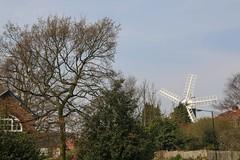 Holgate Windmill, April 2015 (3)