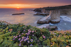 Spring on the Pacific coast (hazarika) Tags: california santacruz davenport pacificcoast canon1635mmf28liiusm canon5dmarkiii singhray3stopreversegnd