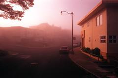 Pink fog #2 (Robert Ogilvie) Tags: sunrise contax ax contaxax fujivelvia50 expiredfilm slidefilm