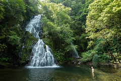 Idyllic tropical waterfall, Amami Oshima, Japan (SamKent22) Tags: trip travel vacation holiday man green nature water pool japan rural forest swimming outdoors countryside waterfall scenery asia exploring kagoshima foliage jungle vegetation greenery remote lush amamioshima