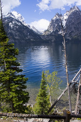 A lake in the Tetons (Fred Flyfisher Fotos) Tags: lake montana pentax grand yellowstone wyoming tetons k5 pentaxcamera pentaxian pentaxart pentaxk5