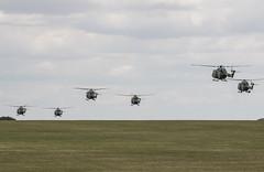 EGVP - Lynx AH7 Final Farewell (lynothehammer1978) Tags: egvp aacmiddlewallop aac armyaircorps army britisharmy middlewallop lynxah7finalfarewell westlandlynxah7 ze378 zd280 xz616 xz651 xz184 xz670