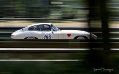 Ace of Hearts (Raph/D) Tags: auto trees motion english classic colors car race speed forest canon hearts eos movement track shot mark indianapolis ace william racing historic peter mans le ii e 7d type l driver series british jaguar through straight coventry endurance panning brand circuit catchy ik sportscar racer motorsport lyons etype vitesse pilote fil 2016 sarthe lseries mulsanne lemansclassic sxties canoneos7dmarkii