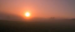 the new day behind the fog (Florian Grundstein) Tags: sunrise trees light shadows misty fog mystic nature beautiful nikon d610 nikkor landscape wallpaper grundstein florian