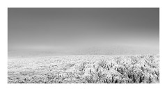 Glacial Mist (Nick green2012) Tags: iceland glacier cold mist landscape 21 ice mountains