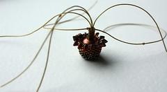 Are you my anemone? (Sewn in stories) Tags: beading beadwork miyukiseedbeads dragonbeads miyukidelicabeads woodenbead beadedbead acryliccraftpaint seatheme seaanemone anemone