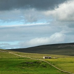 In the land (Hilary Causer) Tags: weardale england north moorland stonewalls stonecottage barn farmland squareformat sky june summer landscape space open lightandshade