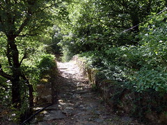 Morna (afilitos) Tags: greece pieria mount olympus morna skoteina stone bridge