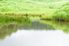 8Tonomine Highland (anglo10) Tags:   japan   field