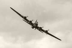 Sally B straight ahead B-W (Beth Hartle Photographs2013) Tags: shuttleworthcollection airshow aircrafts historicaircraft wwii flyingfortress b17 b17sallyb boeing bomber usaaf