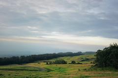 upcountry Maui (heartinhawaii) Tags: maui kula haleakala upcountry downslope hawaii nature field hill clouds bigsky sky mauiinnovember shotfromcar canons90 landscape windyroad hills trees