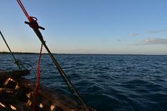 Return voyage from Kilwa Kisiwani to Kilwa Masoko by wooden dhow (7) (Prof. Mortel) Tags: tanzania dhow kilwakisiwani kilwamasoko