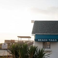 (gwoolston) Tags: beach ocean tags newjersey jerseyshore stoneharbor plants boardwalk seashore