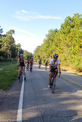 GOPR8324 (EddyG9) Tags: mstour150 ms tour training ride covington abita outdoor cycling cyclists bicycle louisiana 2016 paceline gopro hero3 teamsmiley rookie riders