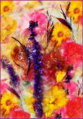 Iced Flowers 2 (Martina Morris ( Ireland) Thanks for over1,000,000) Tags: art flowerscloseup flower macro myimpressionsofnature