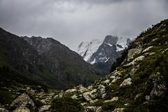 2 (310) (sasiphotography) Tags: nature moon landscape snow mountains rock climbing hiking horse kyrgyzstan dog lake beautiful hill pass river