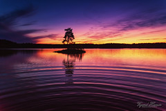 Sunset by the lake II (Usstan) Tags: ytreenebakk akershus norway no waves autumn sun d750 2470mm lens sigma water reflection reflections shadows outdoor lake evening sunset dusk seasons locations clouds sky tree serene norge clear colors nikon enebakk landscape calm