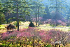 Jin_a06196 (Chen Liang Dao  hyperphoto) Tags:                vacation