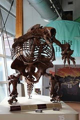 Giant Sloth (demeeschter) Tags: canada yukon territory whitehorse beringia interpretive centre museum heritage archaeology palaeonthology history attraction science