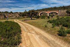 Camino y puente (Eduardo Estllez) Tags: espaa naturaleza color horizontal ruta rural puente camino natural paisaje nublado senderismo sano huellas nadie extremadura rodadas salorino eduardoestellez estellez riveradelosmolinos