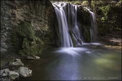 "Serie ""Alienígenas"" ( El Vigía) (eredita) Tags: naturaleza primavera rio agua paisaje serie cascada fondodeescritorio altube eredita fernnan"